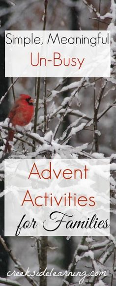 advent calendar activities that slow down, savor the season and bring families together. Advent activities. Christmas advent.