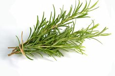 Natural herb Rosemary Natural herb Rosemary has been in applying as an effective result to hair loss for centuries now. Rosemary also helps in decreasing hair thinning and balding. Herbs For Hair Growth, Quick Hair Growth, Natural Hair Growth, Rosemary Health Benefits, Rosemary For Hair, Sage Herb, Vegetables For Babies, Container Vegetables, How To Grow Natural Hair