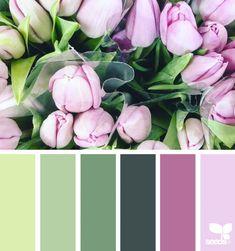 ✮ Color Spring 14 May 8 Design Seeds ® 2018 Colour Pallette, Colour Schemes, Color Combos, Design Seeds, Spring Images, Color Balance, Colour Board, Color Stories, Color Swatches