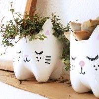 Pet Bottle Kitty Planters