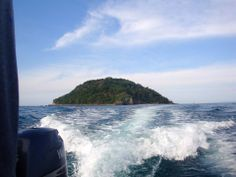 Avistamiento de BALLENAS en Islas Marietas..  Ecoviajesmexico@gmail.com Facebook/Ecoviajesmexico.com https://www.facebook.com/eco.v.mexico
