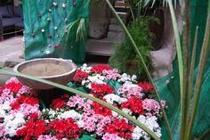 Agua y flores (2012)