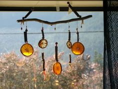 Litha craft: Sliced lemons and oranges left to dry. Then string up with cinnamon sticks and beads tied to a stick.