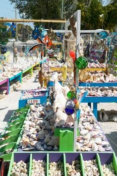 Florida Keys sea shell souvenir shop - incredible choice of shells of all kinds - a delight for the kids.