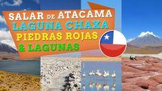 Excursión a la alta puna de Atacama y los paisajes más extraterrestres que haya visto. #video #viajes #chile #paisajes #naturaleza