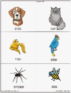 Animal Flashcards For Kids - https://www.diigo.com/user/evilknevil