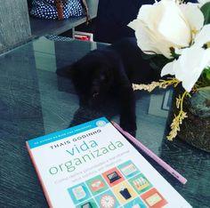 Livro Vida Organizada, da Thais Godinho.