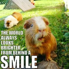 The world looks brighter from behind a smile.