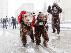 Boys in Bucharest dress as bears for a Romanian Christmas caroling tradition in…