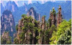 Zhangjiajie National Forest Park photos and pictures of scenery, culture, history, and travel from Zhangjiajie Tour Guide. Zhangjiajie, Parc National, National Parks, National Forest, Tianzi Mountains, Mountain Images, Amazing Places On Earth, Mountain Wallpaper, Park Photos