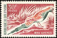 Namaqua Dove stamps - mainly images - gallery format