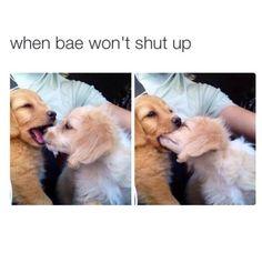 when bae won't shut up