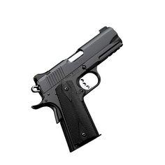 kimber arms | Kimber Pro TLE/RL II .45ACP Pistol - 7rd K3200116