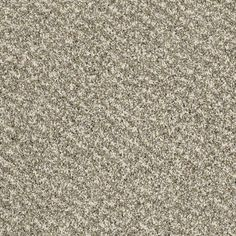 """Carpeting in style """"Storm Chaser Accent"""" color Freckles by Shaw Floors"""