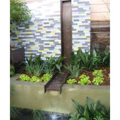 Formal Ponds Design Ideas, Pictures, Remodel and Decor
