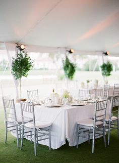 classic white wedding inspiration // indoor trees + tents + white linens + white flowers