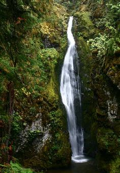 Oregon Waterfalls - Pinard Falls out of Cottage Grove