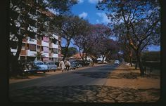 Yeoville late 1850's Johannesburg City, Ol Days, Good Ol, Family History, Landscape Photography, South Africa, Dolores Park, Sidewalk, Street View