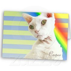 Casper Rainbow | Devon Rex Cat Birthday Card