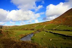 Photography from Inch and Dingle area - Sunday 10th February