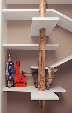 """The Perfect 'Cat House' by Hey!Cheese If you have a feline friend who rules your heart and your hearth, then you'll appreciate I-CHI's 'perfect"""" cat house. The contemporary apartment features. Gatos Cat, Custom Shelving, Modern Shelving, Shelving Ideas, Custom Bookshelves, Bookshelf Design, Bookcases, Etagere Design, Cat Shelves"""