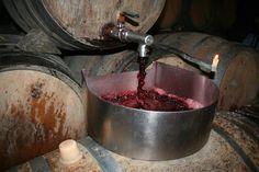 Bonita imagen de la trasiega del #vino (#Bodegas Martinez Lacuesta, #Haro, #Rioja Alta) pinned with Pinvolve