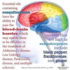 Essential Oils for the brain---crossing blood/brain barrier w/Young Living therapeutic grade essential oils.