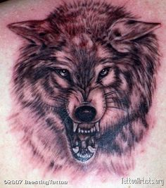 angry wolf tattoo - Google Search