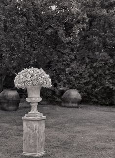 In all its classical elegance and beauty here comes the secret garden of Borgo della Merluzza to host the perfect event in the warm daylight or at night with a magical scenary unfolded.