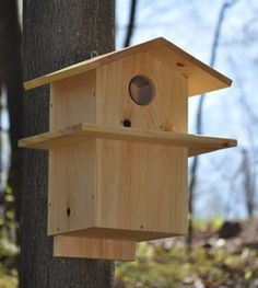 dimensions for a squirrel house - - Yahoo Image Search Results Squirrel Home, Squirrel Feeder, Bird Feeders, Woodworking For Kids, Woodworking Plans, Woodworking Crafts, Woodworking Projects, Bird House Kits, Bird Aviary