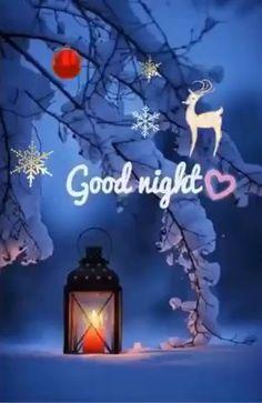 Romantic Good Night Image, Beautiful Good Night Images, Cute Good Night, Good Night Gif, Good Night Quotes, Night Video, Good Night Sleep, Merry Christmas Gif, Christmas Scenery
