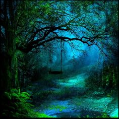 A high, mossy swing dangling over a shallow creek is enticing, in the Dark Woods. But don't ever swing at twilight, unless you want to end up in the Other Land...