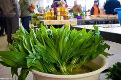 Celery, Pesto, Food And Drink, Vegetables, Drinks, Plants, Food Ideas, Medicine, Health