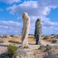 Polixeni Papapetrou est un artiste photographe australien. Depuis 2012, il développe un projet personnel nommé « The Ghillies ». Avec « The Ghillies », le photographe livre une vision imaginaire dans un monde réel, il se sert des magnifiques paysages australiens comme toile de fond pour ses compositions.
