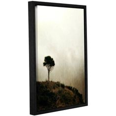 ArtWall Kevin Calkins Pomontory Point Gallery-Wrapped Floater-Framed Canvas, Size: 24 x 36, White