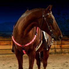LED Horse Breastplat