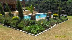hedge around pool area