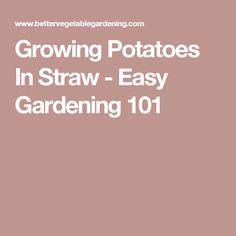 Growing Potatoes In Straw - Easy Gardening 101