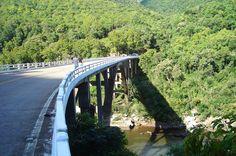 SC, Brazil - 2009