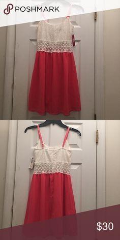 Dresses New lace top Dresses Midi