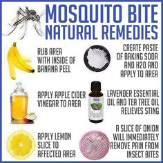 natural mosquito bite remedies!  I definitely need this right now