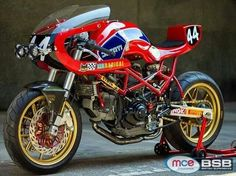 Endurance 24 by Radical ducati