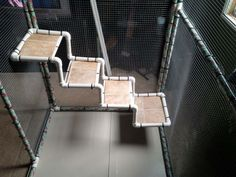 Easy steps out of PVC. They also used linoleum scraps to have a more durable stair area. Could also use fabric for something softer. Cat Trees Diy Easy, Diy Cat Tree, Rat House, Pet Raccoon, Pocket Pet, Zoo Keeper, Pvc Projects, How To Make Toys, Cute Little Animals