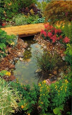Inspiration for around my new pond. Stones among the plants, which will cover the edges once they get established...