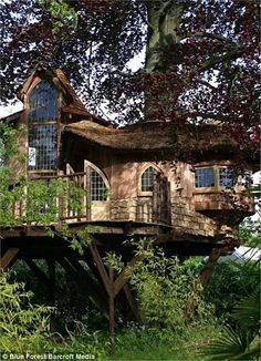 Screw growing up, let's build a tree house (30 Photos)