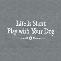 This is good advice for us all, and great for your dog too!