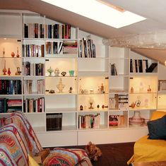 bibliothèque sous escalier avec rangement
