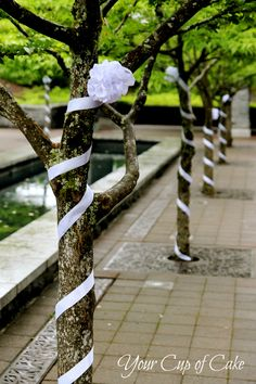 Wrap trees in ribbon for an outdoor reception...I think also wrap them with lights (if power's available)...ribbon by day, lights by night