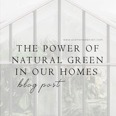 Being exposed to the outside whether it involves greenery, fresh air or water makes us feel good. It provokes the release of good endorphins that assist in our moods and wellbeing. That's why bringing a little outside in will make all the difference. Wall Colors, Paint Colors, Rubber Plant, Home Trends, Air Pollution, Mid Century Style, Hanging Plants, Low Lights, Shades Of Green