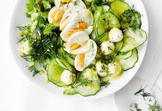 Gurkensalat mit Mozzarella und Ei